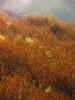 Озеро Голубое Казань
